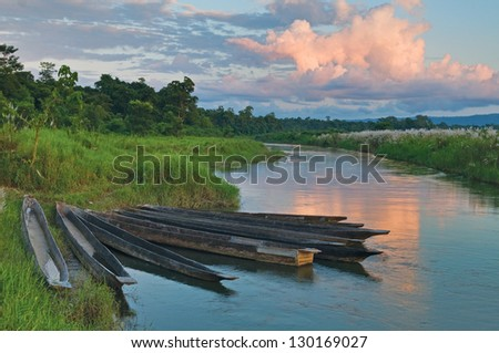 Dugout boats on the river bank in Chitvan's national park in Nepal. - stock photo