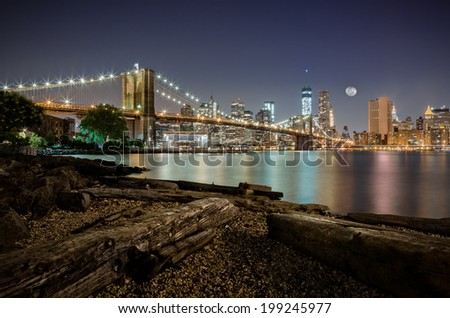 Dumbo after midnight - stock photo
