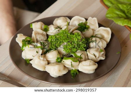 dumplings on the table - stock photo
