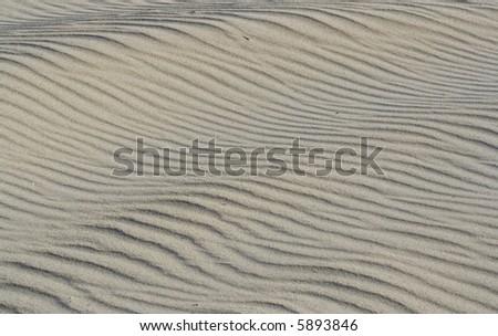 dune - stock photo