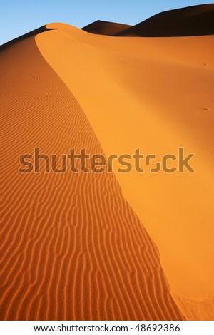 Dune edge in the Sahara - stock photo