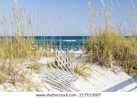 Dune fence and sea oats on the dunes at Pensacola Beach, Florida on Gulf Islands National Seashore. - stock photo