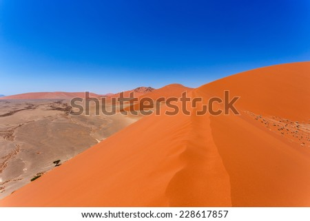 Dune 45 in sossusvlei Namibia, view from the top of a dune, best place in namibia - stock photo