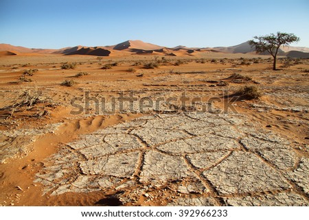 Dunes and desert view in Sossusvlei, Namib Naukluft National Park, Namib desert, Namibia. - stock photo