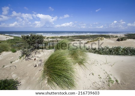 Dunes and sea at the North Sea shore in Holland - stock photo