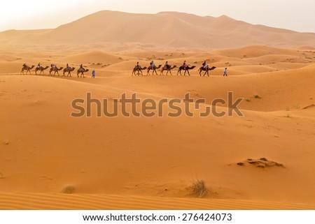 Dunes Erg Chebbi near Merzouga, Morocco - stock photo