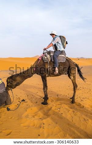 Dunes Erg Chebbi near Merzouga, Morocco - female tourist prepares for ride on camel into the erg - stock photo