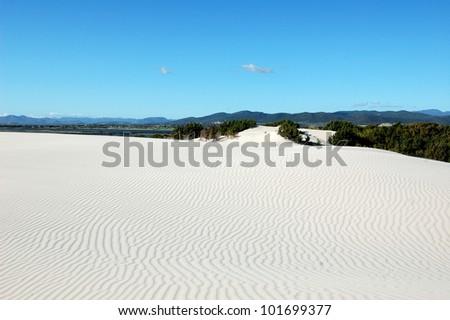 Dunes Sardinia - stock photo