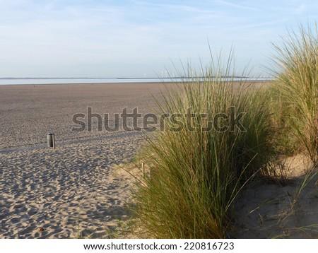 dunes Zeeland, Netherlands - stock photo