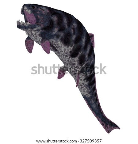 Dunkleosteus Fish on White - Dunkleosteus is a Devonian prehistoric fish that lived in the seas of North America, Poland, Belgium and Morocco. - stock photo