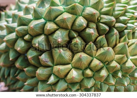 Durian closeup thorn spiky background. - stock photo