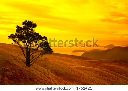 Dusk, lonely tree in foreground with islands in the distance. - stock photo