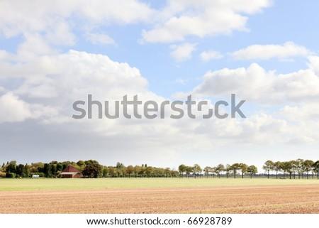 Dutch farmland under blue cloudy sky - stock photo