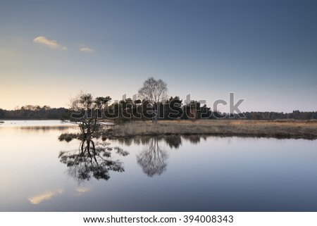 Dutch landscape with reflection of trees in the water - hollands landschap - stock photo