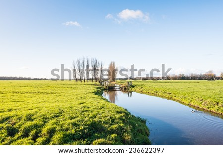 Dutch polder landscape in the fall season with a mirror smooth stream reflecting the wooden fences and two windmills in the background. - stock photo