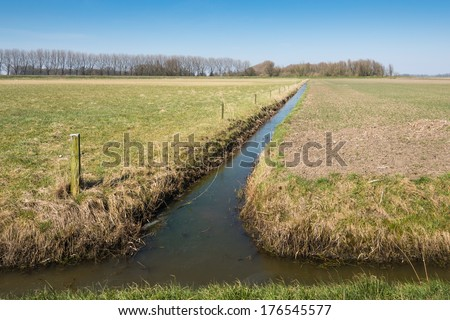Dutch polder landscape with grassland and a field sown immediately after the winter season and separated from each other by a narrow ditch. - stock photo