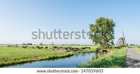 Dutch polder landscape with windmills and grazing cows in the pasture next to a ditch. - stock photo