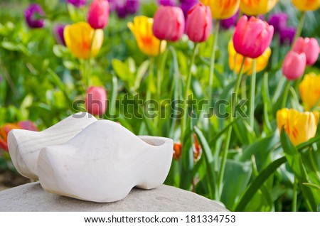 dutch wooden shoes on a rock in tulip garden - stock photo