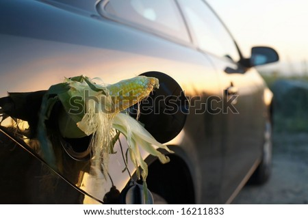 E85 Ethanol Gas, corn in in vehicle gasoline tank - stock photo