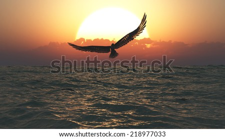 Eagle flying in the clouds at dawn - stock photo