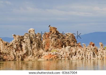 Eagle nesting on top of a Tufa at Mono Lake in California - stock photo