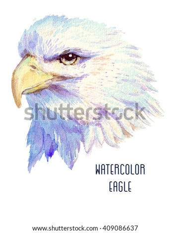 Eagle watercolor bird isolated on white background.Hand-drawn drawing of the beautiful eagle.The symbol of the USA . It may be used for design of a t-shirt, bag, postcard, a poster and so on. - stock photo