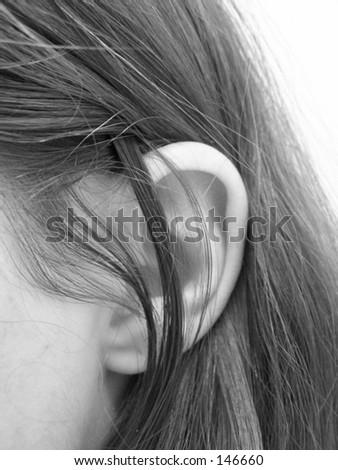 ear - stock photo