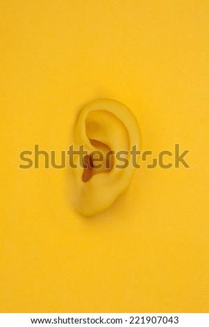 ear model / hearing - stock photo