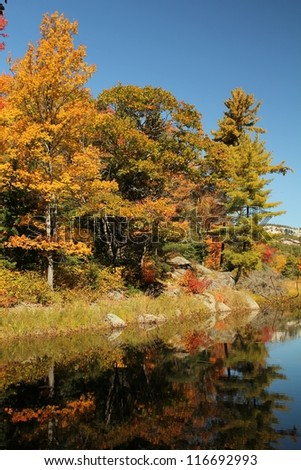 Early autumn trees reflecting on calm water, in Ontario, Canada - stock photo