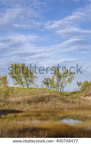 Early fall color shows in the grasses of the West Beach Unit, Indiana Dunes National Lakeshore, Porter County, Indiana - stock photo