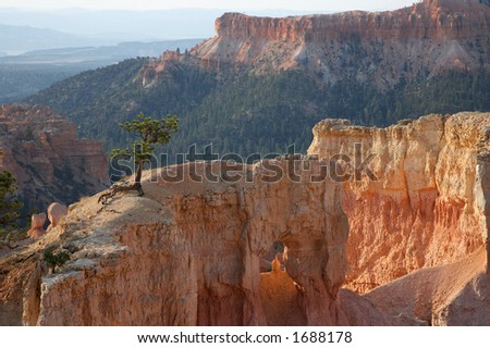Early Morning Bryce Canyon National Park Utah - stock photo