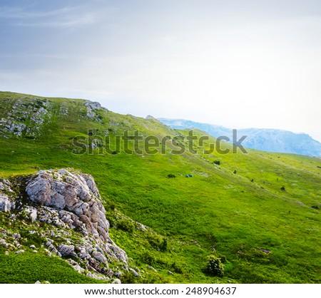 early morning green hills scene - stock photo