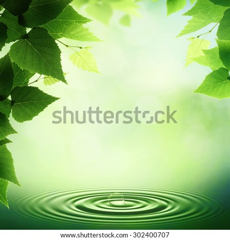 Early morning in the deep forest, abstract neutral background - stock photo