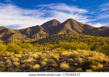 Early morning in the desert looking toward the mountains - stock photo