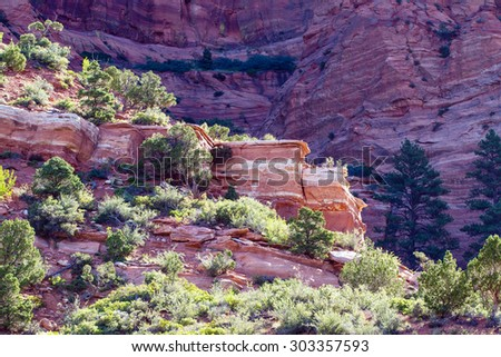 Early morning light on rocky outcropping in Zion National Park in Utah - stock photo