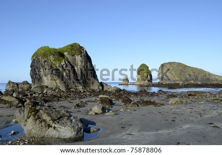 Early morning minus tide reveals tide pools at the Oregon Coast - stock photo