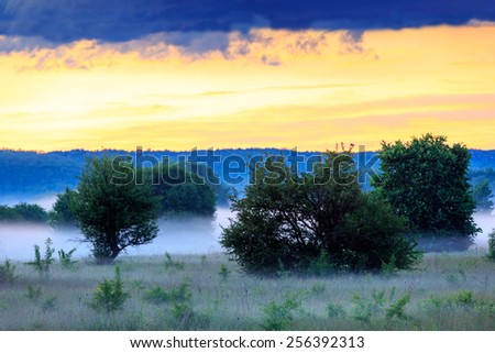 Early morning scene in steppe, Ukraine - stock photo