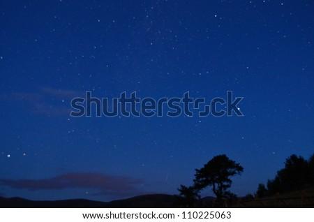 early morning stars - stock photo
