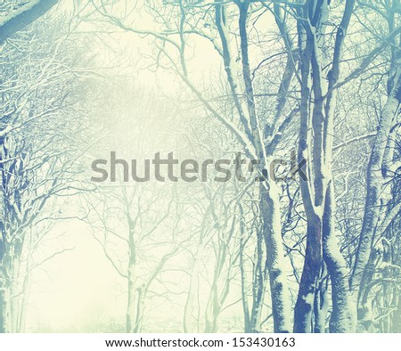 Early morning sunbeam in winter - stock photo