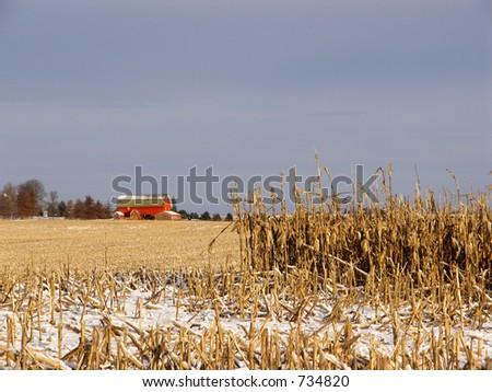 Early Snow on Farm Field - stock photo