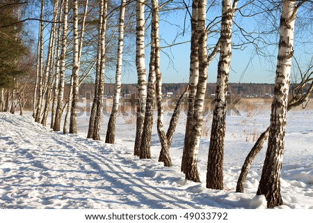 Early spring landscape - stock photo