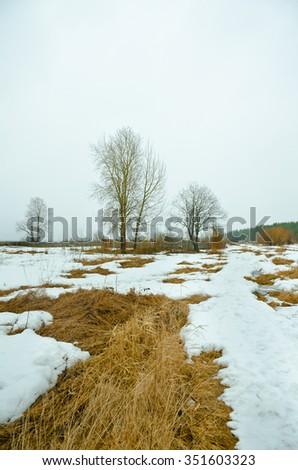 early spring landscape / snow covered fields with dry grass and bare trees - stock photo