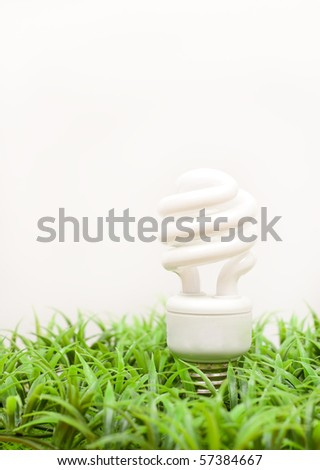 Earth Friendly Concept - stock photo