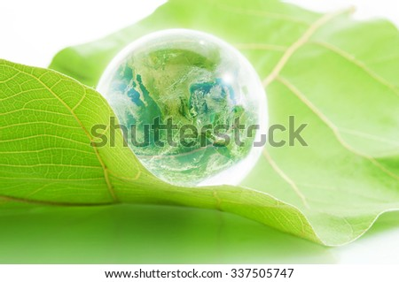 Earth in glass ball on leaf ,Elements of this image furnished by NASA - stock photo