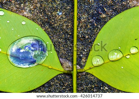 Earth in water drop reflection on green leaf, Save the earth and global warming concept, Elements of this image furnished by NASA - stock photo