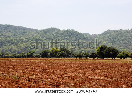 Earth soil grooves farming over field for crop planting on farm lands. - stock photo