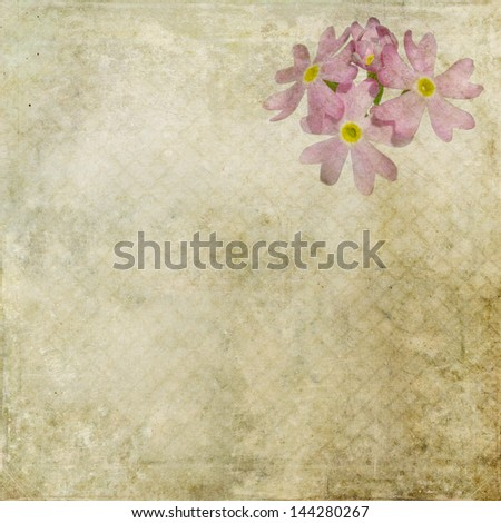 Earthy floral background image and design element - stock photo