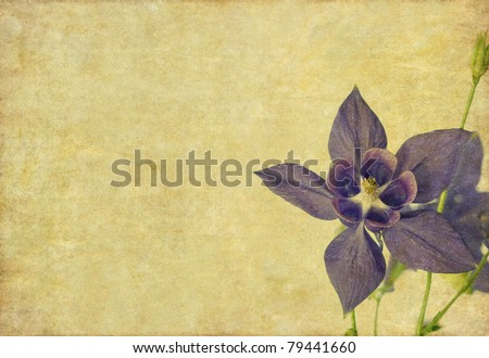 earthy floral design element with copy space - stock photo