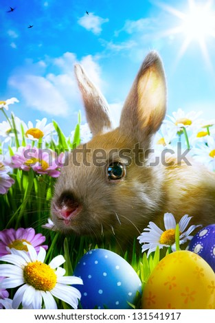 easter Baby rabbit and easter eggs - stock photo