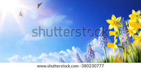 Easter background with fresh spring flowers - stock photo